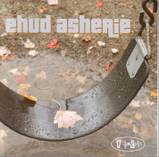 Ehud_asherie_swing_set