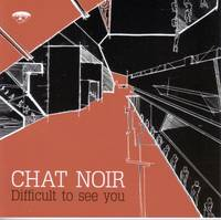 Chat_noir_difficult_to_see_you